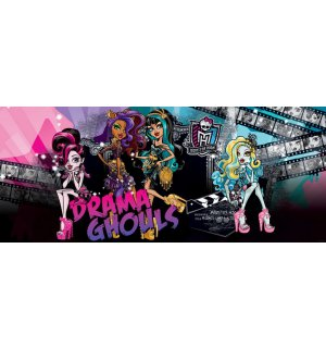 Fotótapéta: Monster High (Drama Ghouls) - 104x250 cm