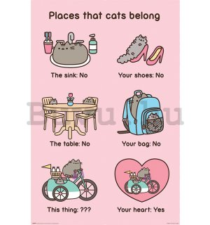 Plakát - Pusheen (Places Cats Belong)