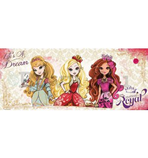 Fotótapéta: Mattel Ever After High (3) - 104x250 cm
