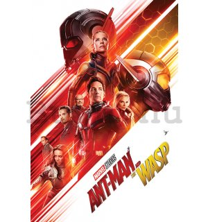 Plakát - Ant-Man and The Wasp (1)