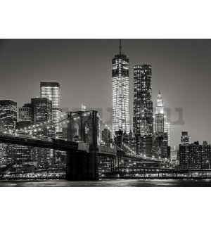Vlies fotótapéta: Brooklyn Bridge (4) - 104x152,5 cm