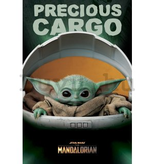 Plakát - Star Wars The Mandalorian (Precious Cargo)