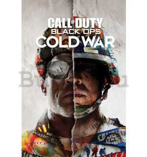 Plakát Call Of Duty Cold War (Split)