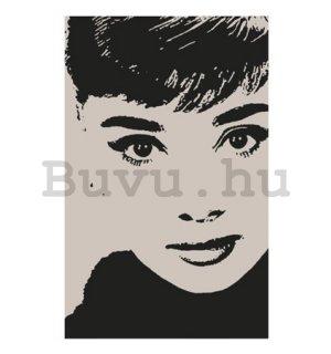 81d198a36c Audrey Hepburn plakátok - Buvu.hu